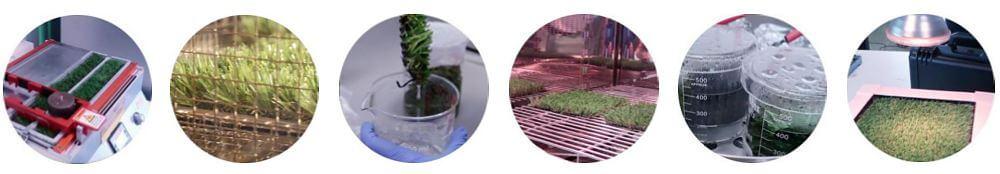 technical studies artificial grass